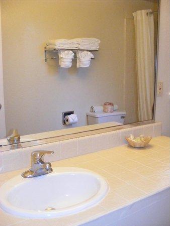 Super 8 Monterey/Carmel: Bathroom