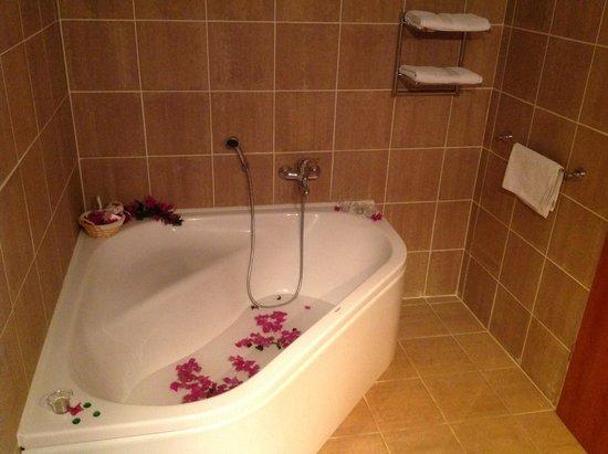Fox Apartments: Romantic Welcome