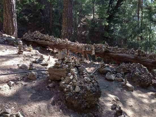Samaria Gorge National Park: The tree piled with stones!