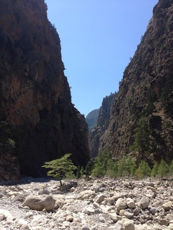 Samaria Gorge National Park: Looking back into the Gorge near the end