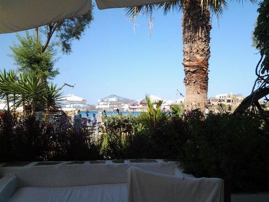 Kalergis Studios : Our veranda, kissed by the sea!