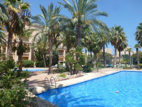 Hotel Alicante Golf : Superbe piscine