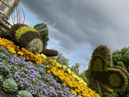Royal Victoria Park : Horticulture