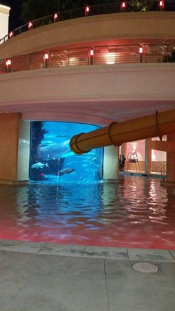 Golden Nugget Hotel: Pool is closed, view of water slide and aquarium.