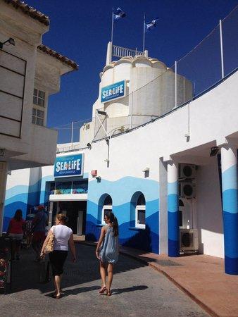 Sea Life Aquarium: Entrada