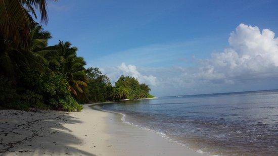 Desroches Island: beautiful ocean