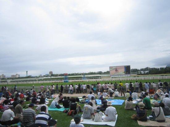 Hakodate Horse Racetrack: ゴール板付近