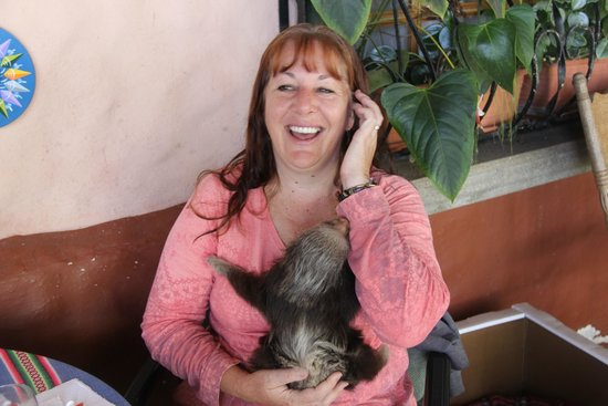 Toucan Rescue Ranch: Leslie, the owner, with baby sloth