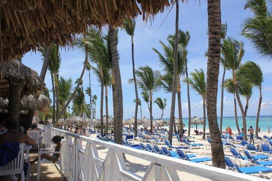 Grand Bahia Principe Bavaro : The beach
