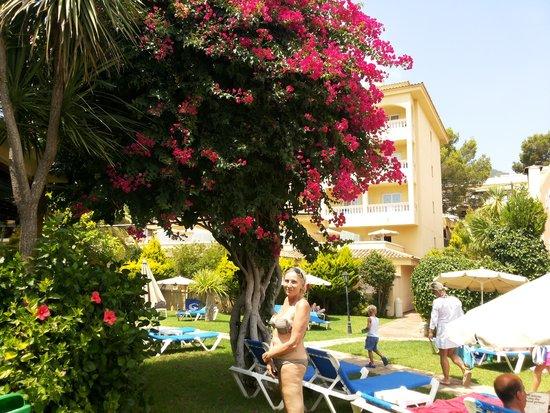 Grupotel Nilo & Spa: wonderfull gardens