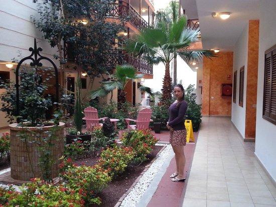 Globales Tamaimo Tropical: grounds