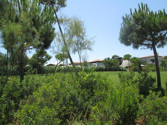 The Romanos Resort, Costa Navarino: Beautiful surroundings