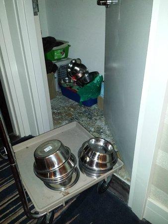 Kimpton Hotel Palomar Washington DC: Pet friendly!  This was a supply closet on my floor...COOL.