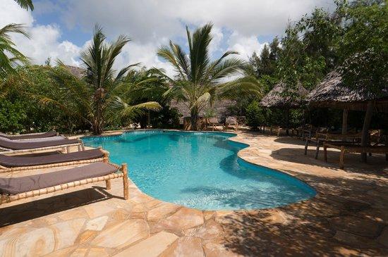 Demani Lodge: pool
