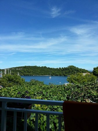 Holiday House Slavica Strazicic : great view