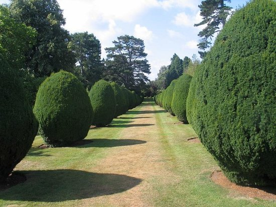 The Elvetham : Garden cries out for photographs