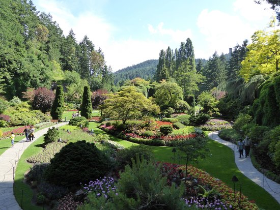 Butchart Gardens, the broad view