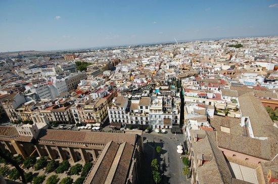 Plaza del Triunfo : Вид с башни
