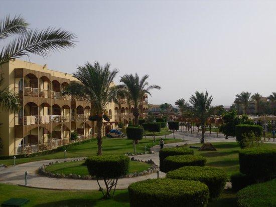 Desert Rose Resort : Udsigten fra vores værelse