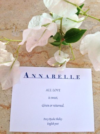 The Annabelle: Lovely touch every evening