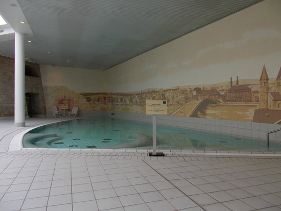 Novotel Mainz: piscina