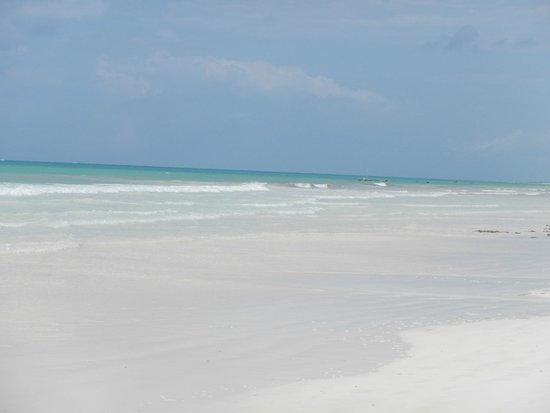 Kole Kole - Baobab Resort Diani: Beach