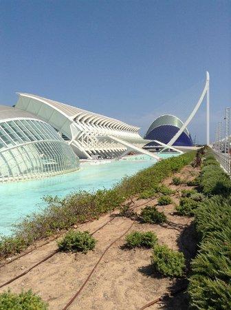 Ciudad de las Artes y las Ciencias: Город искусст