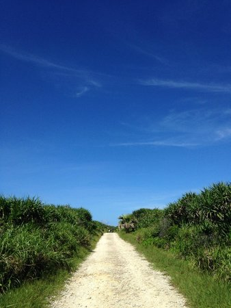 Kudakajima Island: 道と空しかない。ある意味で絶景。