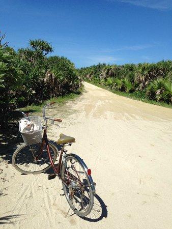 Kudakajima Island: 自転車で島をサイクリング