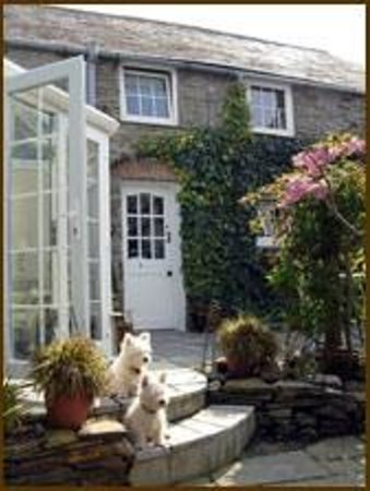 The White Hart: Mimi & Roly Outside The Garden Room
