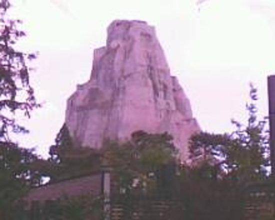 Parc Zoologique de Paris: Le rocher