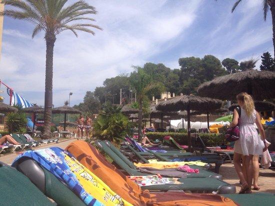 Rosamar Garden Resort: Transat