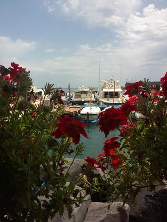 Nido Verde : На побережье. Амальфи