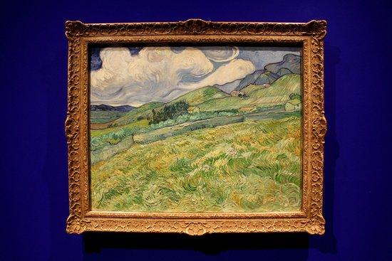 Ny Carlsberg Glyptotek : Van Gogh