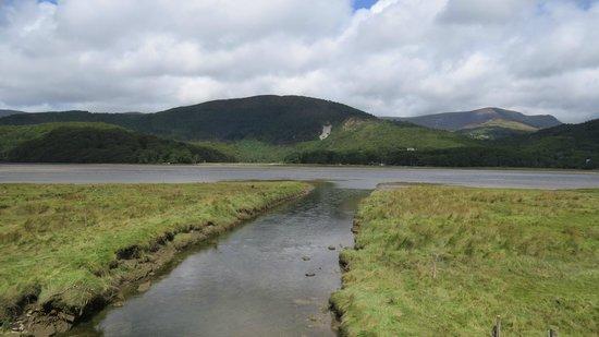 The Mawddach Trail: Tribrutry