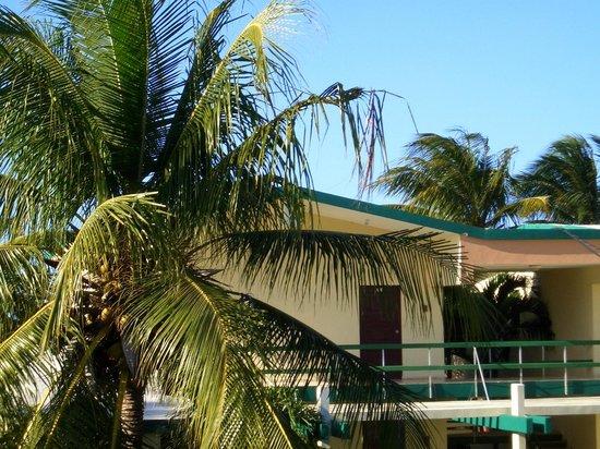 Islazul Mar del Sur Aparthotel: Вид из номера