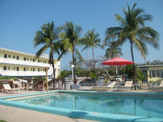 Harbor Lights Motel: Poolside