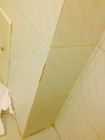 Green Sporting Club: Shower walls