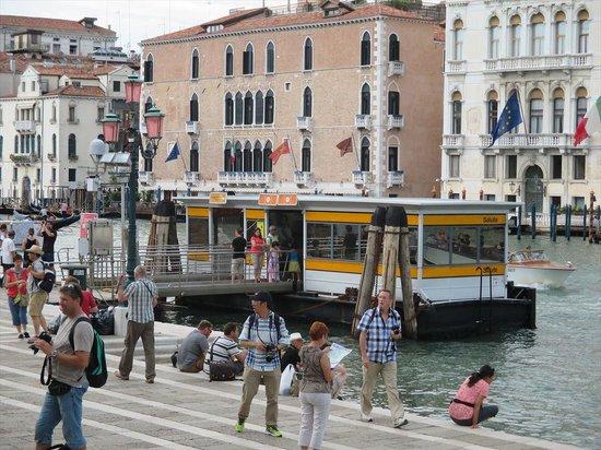 Canal Grande: バポレット乗り場