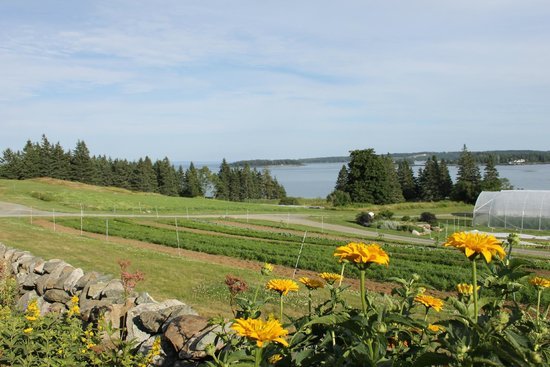Nebo Lodge: View from the Turner Farms