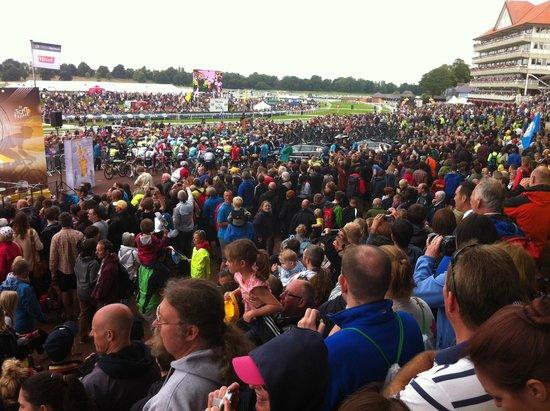 York Racecourse: Allez!!
