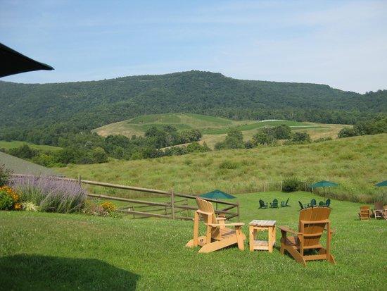Glen Manor Vineyards : Great view, great wines