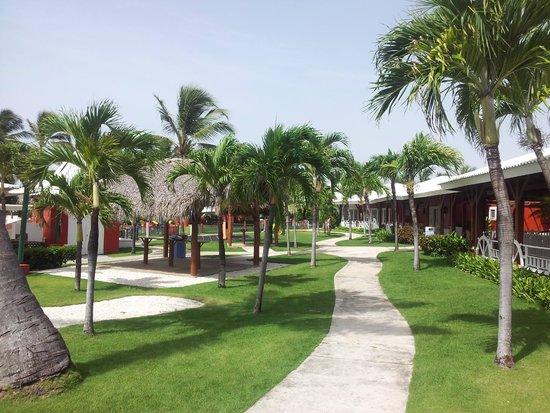 Club Med Punta Cana : Jardines