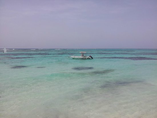Club Med Punta Cana : Playa