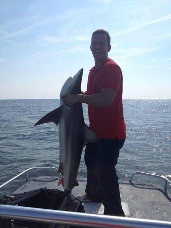 Mad Shark Charters: 6 ft Black tip shark!