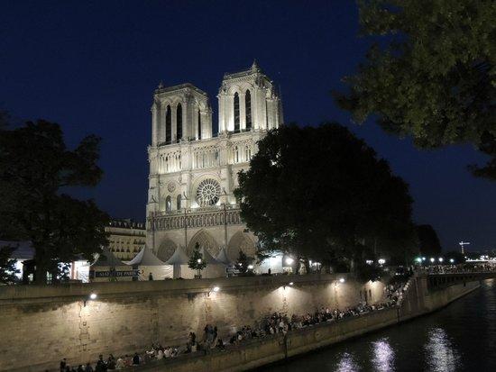 Rive Gauche : Notre Dame de Paris at night