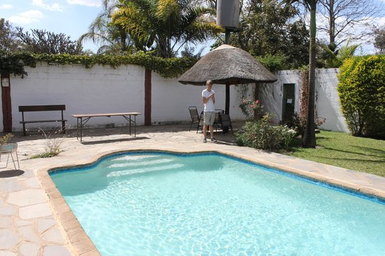 Wayside Guest House : The pool area, separate from the gardens
