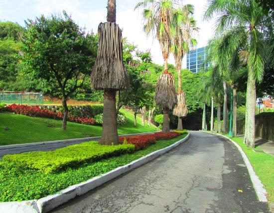InterContinental Tamanaco Caracas : На территории отеля