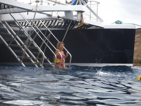 Kai Kanani Sailing Charters: Snorkel ladder