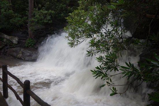 Laurel Falls: angry falls